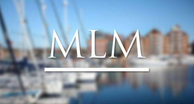 MLM Terminology